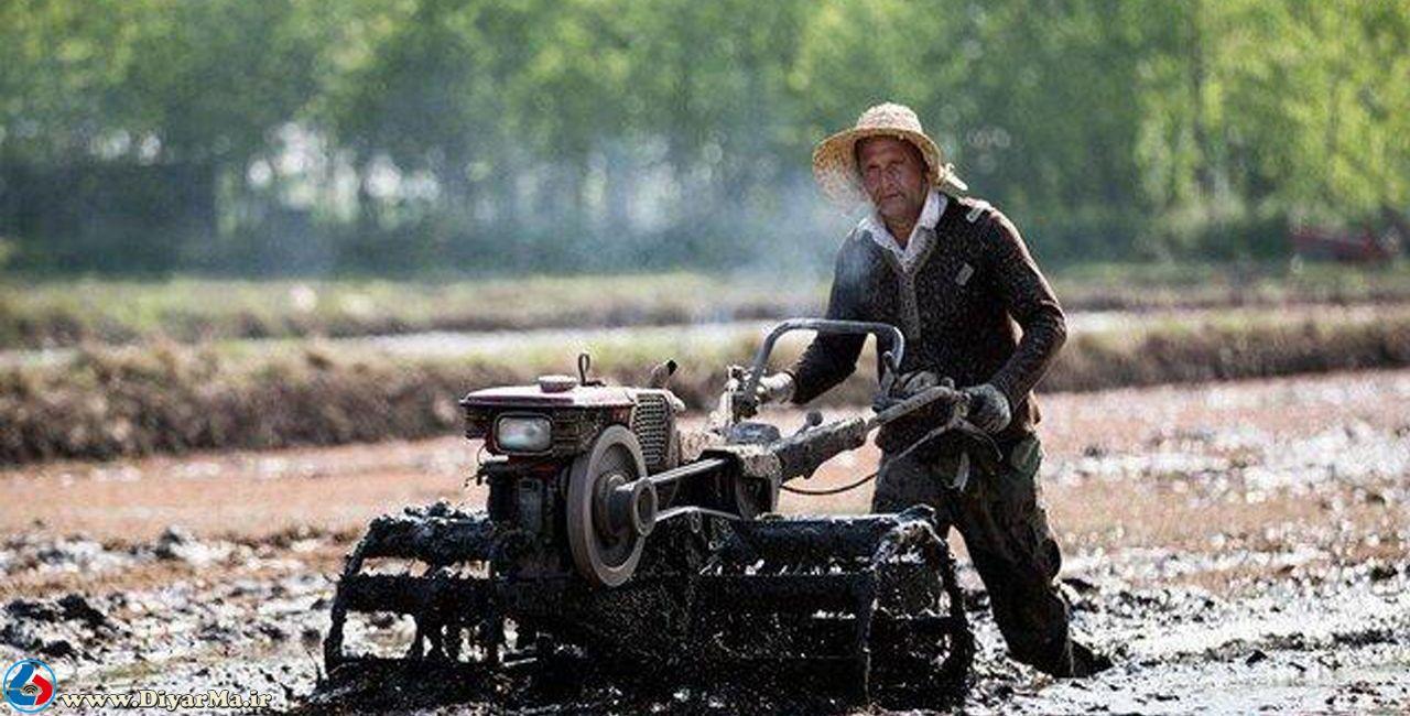 مدیر جهاد کشاورزی آستانه اشرفیه گفت: شخم اول در شالیزارهای این شهرستان رو به اتمام است.